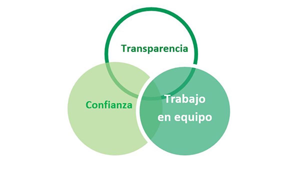 Estos dos últimos, junto con un elemento más, conforman lo que llamamos nuestros 3T (se deriva del inglés - Transparency, Trust and Teamwork)